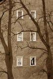 Droevige vensters Stock Afbeeldingen