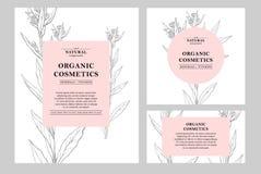 Drog blom- kort och baner för vektor hand Botanisk hand dragen illustration Mallar för tappninghipsterört naturligt vektor illustrationer