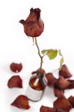 drog fallen rose liten medicinflaska för petals Arkivbilder