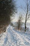 droga śnieżna Zdjęcia Stock