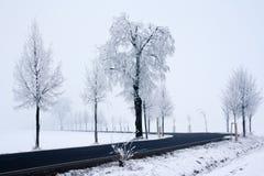 droga śnieżna Zdjęcie Royalty Free
