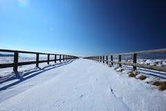 droga śnieżna Zdjęcie Stock