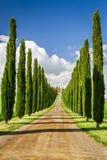 Droga agritourism w Tuscany między cyprysami Fotografia Stock