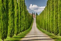 Droga agritourism w Tuscany między cyprysami Zdjęcia Royalty Free