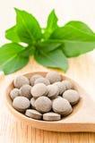 Droga dell'erba della medicina in cucchiaio di legno Fotografia Stock Libera da Diritti