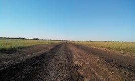 droga do miasta wektora Zdjęcie Stock