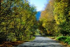 droga do szczęścia Zdjęcie Royalty Free