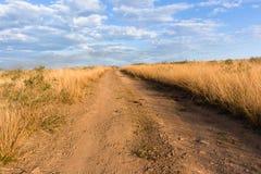 Droga Gruntowa obszarów trawiastych pustkowia krajobraz Zdjęcie Royalty Free