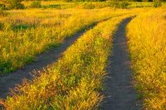 Droga gruntowa przez łąki Zdjęcie Stock