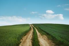 Droga gruntowa przez pszenicznego pole zdjęcie royalty free