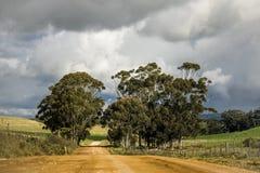 Droga gruntowa przez rolniczych poly w Napier, Zachodni przylądek, Południowa Afryka obrazy stock