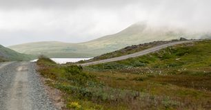 Droga gruntowa w łące w mgle Fotografia Stock