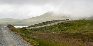 Droga gruntowa w łące w mgle Zdjęcie Royalty Free