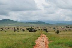 Droga gruntowa w Taita wzgórzy przyrody sanktuarium, Voi, Kenja Obraz Stock