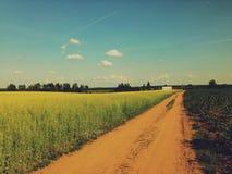 Droga gruntowa w wsi Zdjęcie Royalty Free