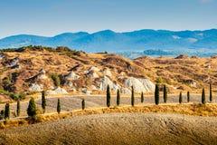 Droga i cyprysy w Tuscany obrazy stock