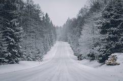 Droga i drzewa zakrywający z śniegiem obrazy stock