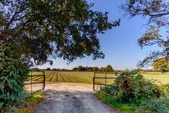 Droga i otwiera bramę średniorolny ` s pole z zielonymi łatami Zdjęcia Royalty Free