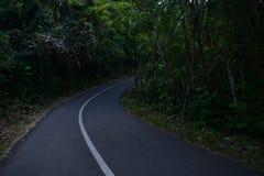 Droga jest piękna obrazy stock