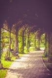 Droga jest samotnością i samotnie Fotografia Royalty Free