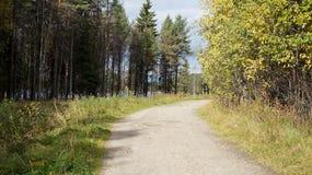 Droga jezioro Zdjęcie Stock