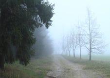 droga mgłowa Fotografia Stock