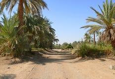 Droga między wadim Halfa i Khartoum. Obrazy Royalty Free