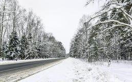Droga na śnieżystym drewnie Obraz Stock