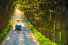 Droga na dębowej alei Droga gruntowa, pył, samochód n Fotografia Royalty Free