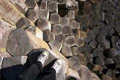 droga na grobli gigantyczny Ireland północny s Obraz Stock