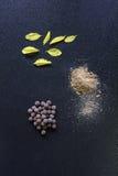Droga natural da medicina Fotografia de Stock