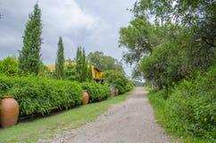 Droga otaczająca zieloną roślinnością Zdjęcia Stock