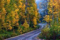 Droga piękno zdjęcie royalty free