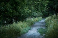 Droga prowadzi wokoło miasto parka Zdjęcia Stock