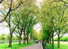 Droga przemian w parku w national mall washington dc fotografia royalty free
