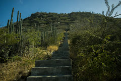 Droga przemian wierzchołek Hooiberg, Aruba Zdjęcie Royalty Free