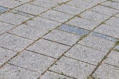 Droga przemian z brukowymi kamieniami Zdjęcia Stock