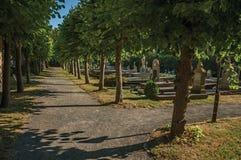 Droga przemian z drzewami w pokojowym cmentarzu przy późnego popołudnia światłem słonecznym przy Damme, obrazy stock
