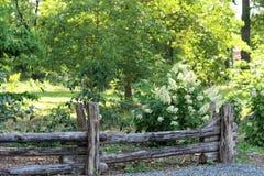 Droga przemian zieleń Fotografia Stock