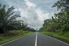Droga przez afrykańskiego lasu sao wolumin Fotografia Royalty Free