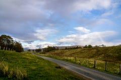 Droga przez fileds w Szkocja z niejasną tęczą Obraz Royalty Free