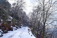 Droga przez himalaje gór zakrywających śniegiem podczas zimy drzew i, Uttarakhand, India zdjęcie stock