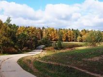 Droga przez jesieni lasowej Pogodnej pogody Szczeg??y w g?r? i fotografia royalty free