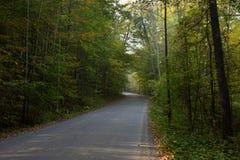 Droga przez lasu Obrazy Stock