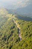 Droga przez lasu fotografia royalty free