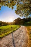 Droga przez pięknego jesień krajobrazu zdjęcie royalty free