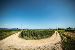 Droga przez poly Zdjęcia Stock