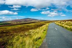 Droga przez Wicklow gór Zdjęcia Royalty Free