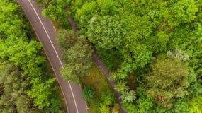 droga przez zielonego lasowego widoku od above Zdjęcie Stock