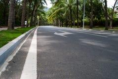 Droga przy Hainan, Chiny Zdjęcia Stock